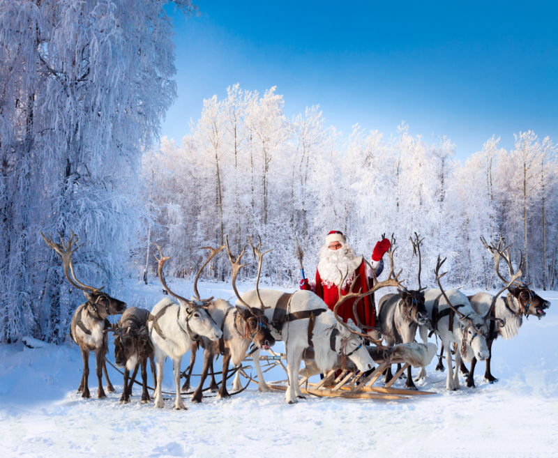 Santa Claus with his reindeers in snowy forest.