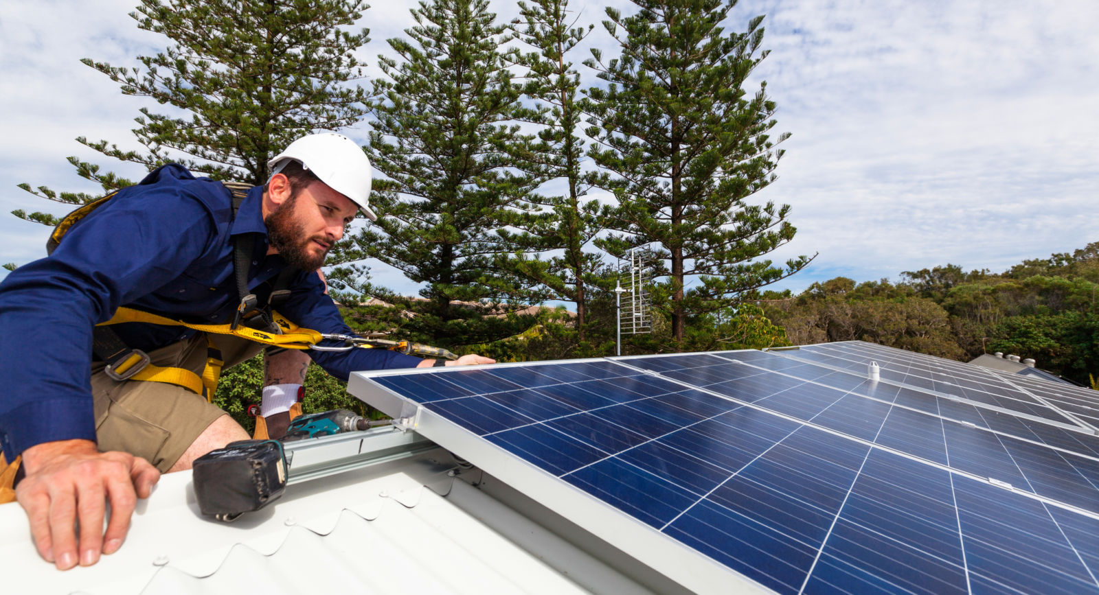 Solar panel technician checking solar panels